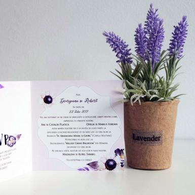 Invitatie nunta BIN208